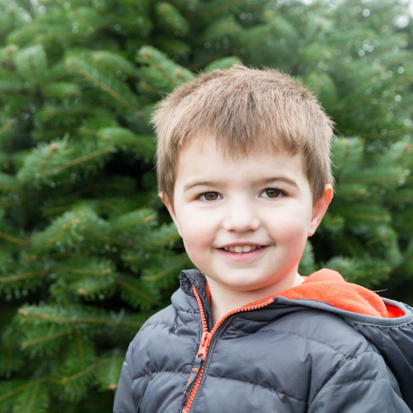 The Great Christmas Tree Hunt of 2014